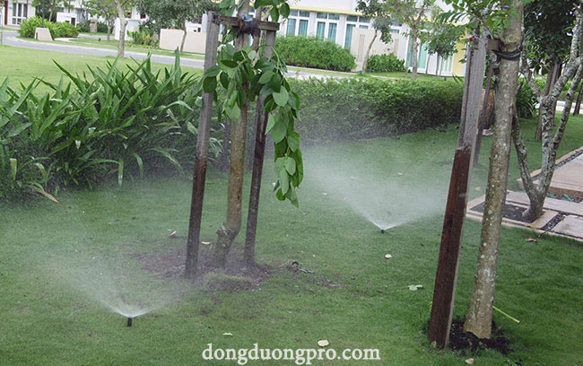 Béc tưới cỏ sprays bán kính 5m