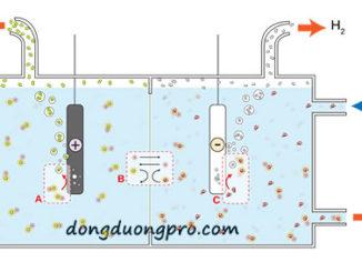 Sơ đồ điện phân muối bể bơi