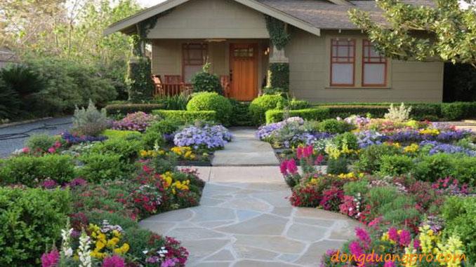 Hoa trồng nở suốt 4 mùa - thiết kế và xây dựng sân vườn đẹp