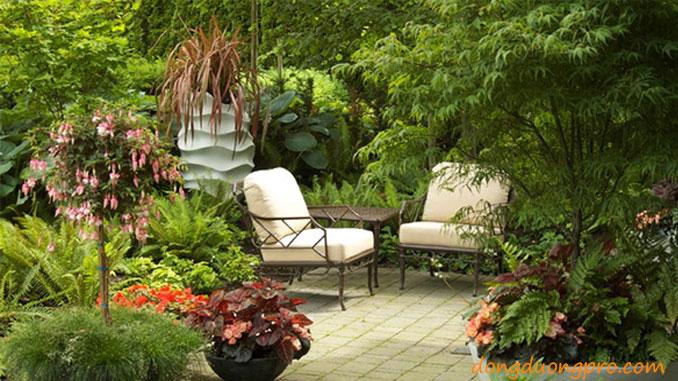 thiết kế và xây dựng sân vườn đẹp
