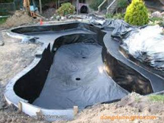 Xây dựng tạo dáng và chống thấm hồ cá koi